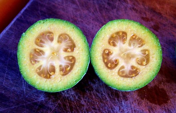 Fruta Exótica