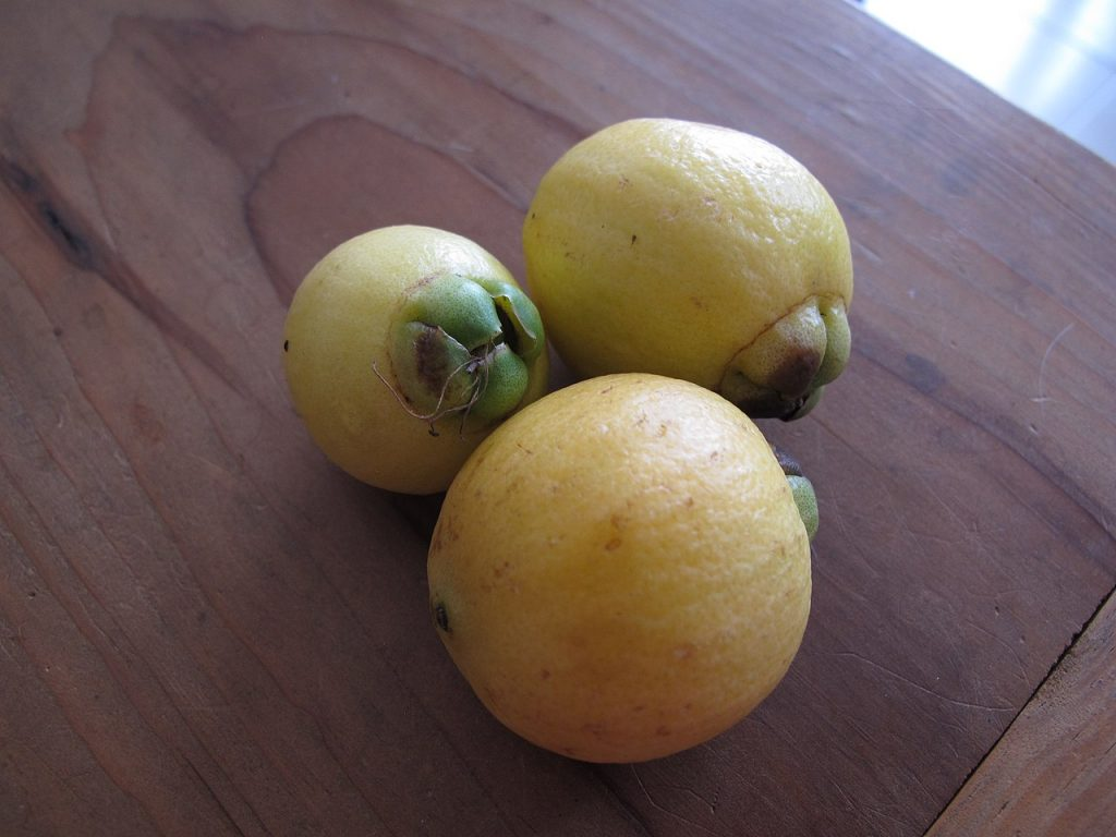 Pomarrosa