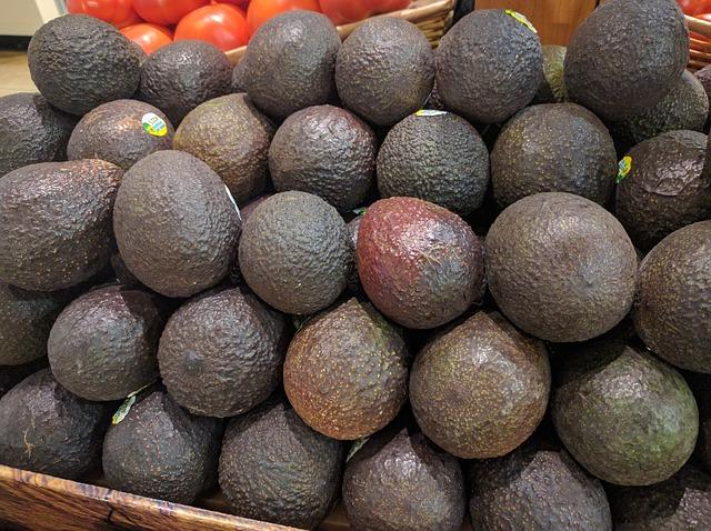Aguacate Fruta